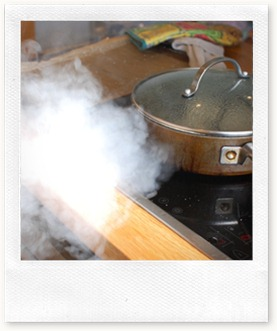 gyoza cooking