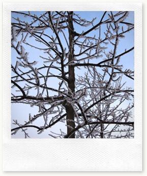 garda snow 2