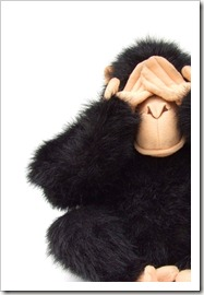 animals_monkeys_002