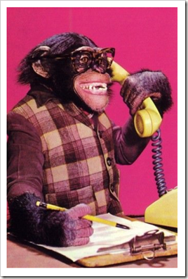 secretary_monkey_on_the_phone