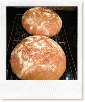 Spelt Bread Irish Baking 1